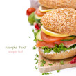 burger with smoked salmon and vegetables, close-up, isolated
