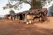 Fototapeten,indien,bombay,slum,poor