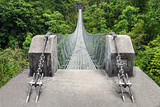 Modern metal bridge