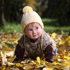 Little boy dressed in warm knitwear playing in yellow foliage.