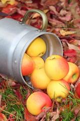 Apfelzauber im Herbst