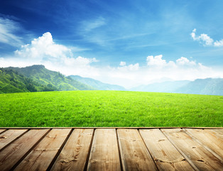 field in mountain and wood floor