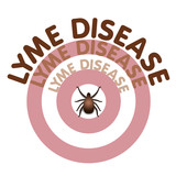 Lyme Disease, Tick, Bulls-eye