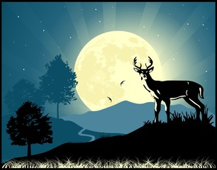 Deer on the moonlight