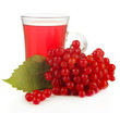 Red berries of viburnum and cup of tea isolated on white