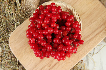 Red berries of viburnum on stand with hay on wooden background