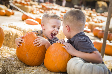 Laughing Boys at a Pumpkin Patch Talking and Having Fun.