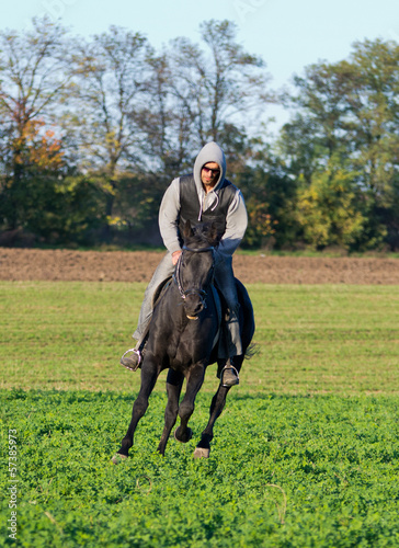 Man riding black horce on field