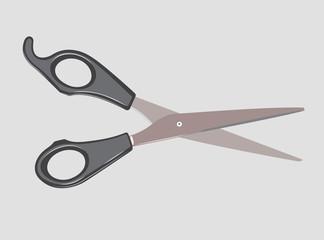 The scissors.