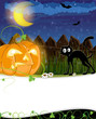 Jack o lantern and black cat
