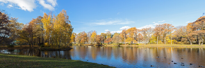 panorama of autumn park