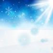 11_Snow landscape