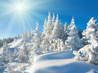 Sunshine under the winter mountain landscape
