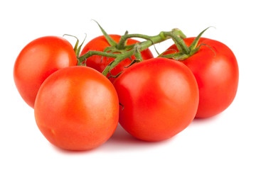 Ripe red tomato with  branch