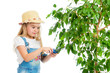 gardener girl cutting leaves from tree