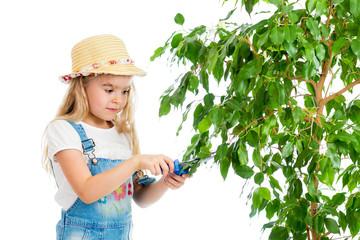 gardener girl cutting leaves from tree