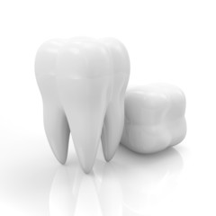 Tooth isolated on white reflective background