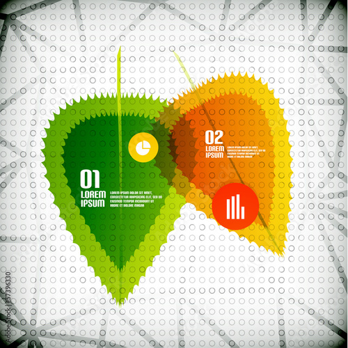 Transparent leaves infographic banner concept