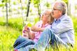 Glückliche Senioren machen Picknick mit Wein