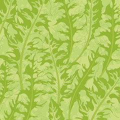 Pattern, green dandelion leaves