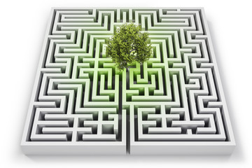 Tree lost in labyrinth