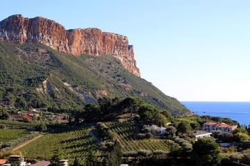 Cap Canaille et vignobles à Cassis