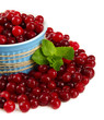 Ripe red cranberries in bowl, isolated on white.