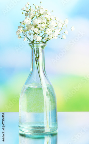 Flowers in bottle on natural background