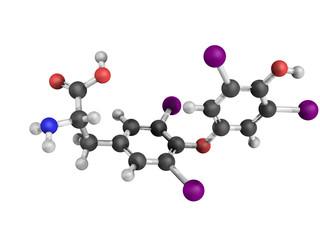 Thyroxine thyroid gland hormone molecule