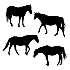 horses silhouettes set 3