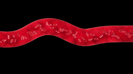 Veins with flowing Blood Cells. Every part is loop-able.