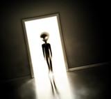 Alien at door