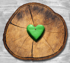 Green Heart on Section of Tree Trunk
