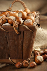 Hazelnuts in basket
