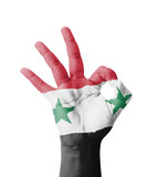 Hand making Ok sign, Syria flag painted
