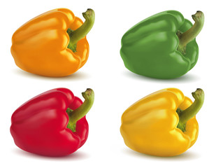 Bell peppers isolated on white. Colored set. Illustration