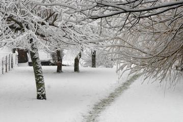 cour de maison en hiver.