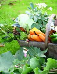 panier en bois de légumes de saison