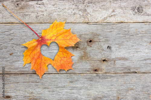 Fall in love photo metaphor