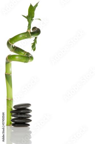 kamienie-i-bambus