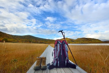 秋の空の草原を歩く