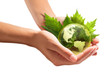 environment conservation in your hands - usa - 57469525