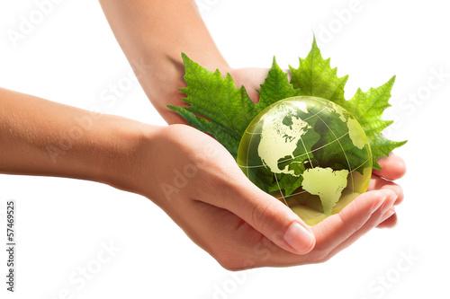 Papiers peints Vegetal environment conservation in your hands - usa
