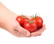 Hand holds three red ripe tomatoes