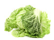 Chinese fresh cabbage.