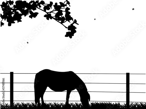 Horse on grassland silhouette layered