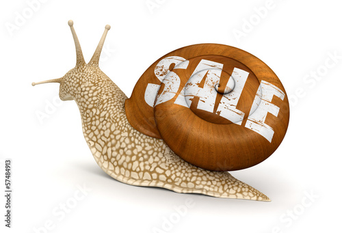 Sale Snail (clipping path included)