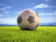 Soccer Ball. Clipping path on the ball.