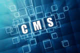 CMS in blue glass cubes - internet concept
