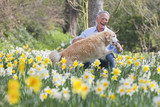 Happy man playing with dog in sunny daffodil field